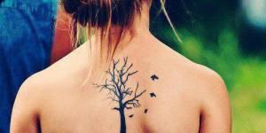 Árbol con sus ramas
