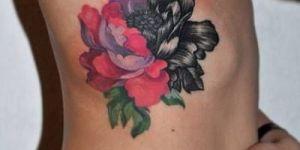 Flor mitad rosa mitad negra