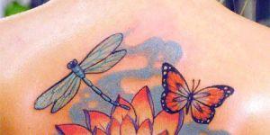 Mariposa, flor y libélula