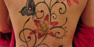 Mariposas, Flores y conejito Playboy