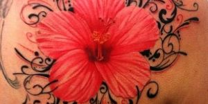 Flor Roja con Firuletes