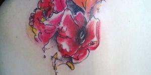 Flores Rojas y Naranjas