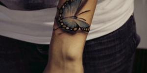 Mariposa Azul 3D