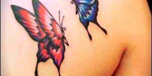 Mariposa Roja y Azul