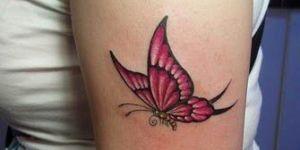 Mariposa rosa perfil