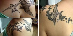 Aves revoloteando