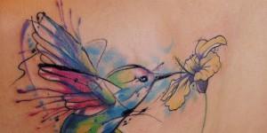 Colibri y Flor Amarilla by Aleksandra Katsan