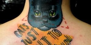 Gato, Triángulo y Frase