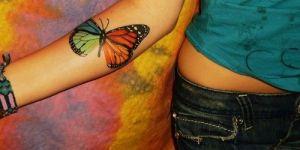 Mariposa de Cuatro Colores
