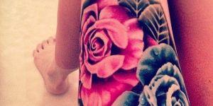 Rosa Azul y Fuxcia