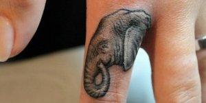 Elefante de Perfil