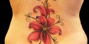 Flor de Lilium