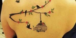 Jaula, Aves, Ramas y Flores