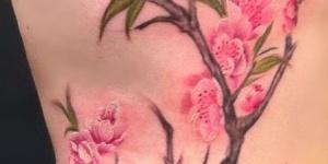 Rama con Flores de Cerezo