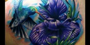 Colibrí sobre Flor Violeta