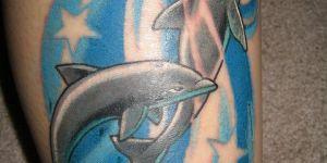 Delfines, Estrellas y Agua