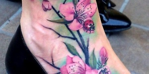 Flores & Lady Bug
