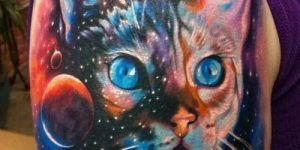 Gato en la Galaxia