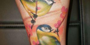 Pájaros & Flores