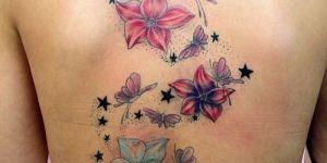 Flores, Mariposas y Estrellas