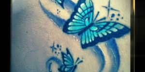 Mariposas con destellos