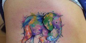 Elefantes by Javi Wolf