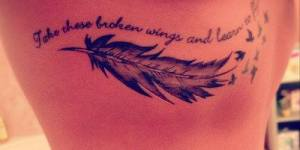 Frase: Take these broken wings and learn to fly, Plumas y Aves