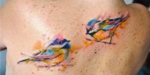 Aves by Aleksandra Katsan
