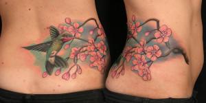 Colibrí & Flores de Cerezo