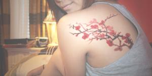 Flores de Cerezo en Acuarelas