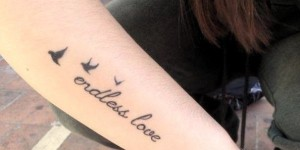 Frase: Endless Love y Aves