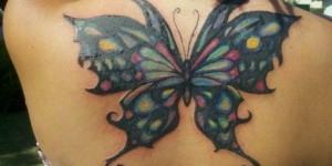 Mariposa con Colores