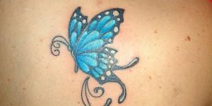 Mariposa Azul & Firuletes