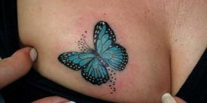 Mariposa en el Pecho