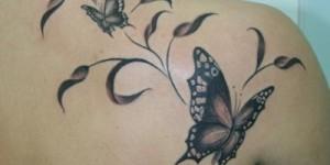 Mariposas entre Hojas