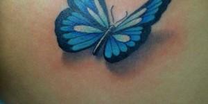 Mariposa 3D Azul