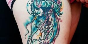 Medusa en Acuarelas by Jay Van Gerven