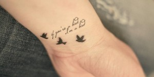Aves y Frase: If you´re a bird, I´m a bird