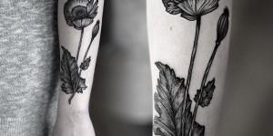 Flor by Kamil Czapiga