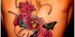 Flores Orquideas y Mariposas revoloteando