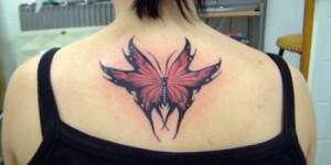 Mariposa Fuxcia