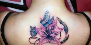Flor, Mariposas y Nombre