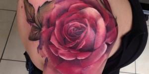 Flores Rosas estilo 3D by Lianne Moule