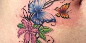 Flores y Mariposas para cicatrices