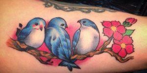 Aves y Flores de Cerezo