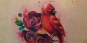Ave Cardenal Rojo y Flores por Javi Wolf