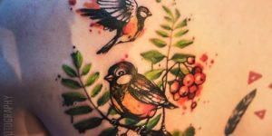 Aves estilo Acuarelas