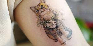Gato con flores