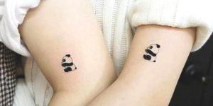 Osos pandas de la amistad