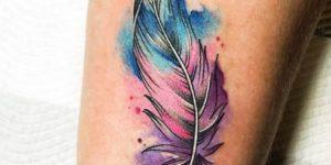 Pluma de colores